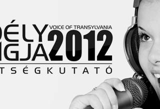 Case study: Voice of Transylvania [social programme]